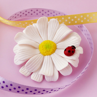 Spilla Margherita in FIMO – Daisy brooch Polymer Clay